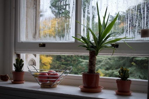 Window Repair Glasgow  - D & N Glass Company